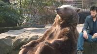 El oso 'relajado' que se ha convertido en un gran meme a nivel mundial