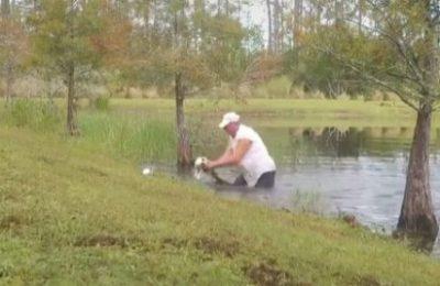 VIDEO: sujeto rescata a un cachorro que había sido atrapado por un caimán