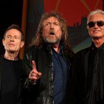 Descubren nueva especie de rana y la nombran como Led Zeppelin